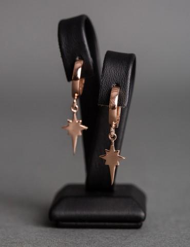 Star rose silver hoops